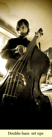 double-bass repairs and set ups